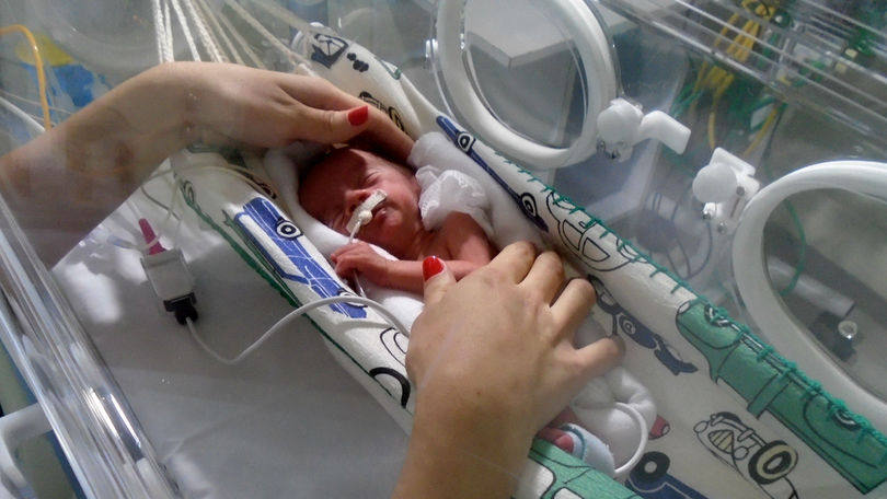 Maternidades mais humanas 3