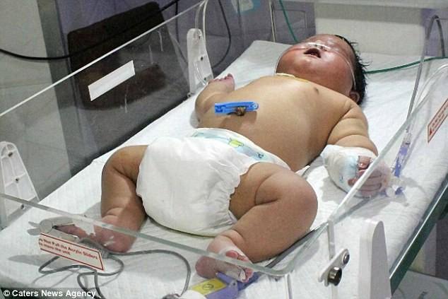 Bebê de sete quilos 1