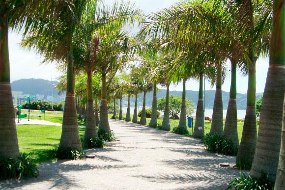 Parque de Coqueiros em Florianópolis (SC) é um dos passeios indicados