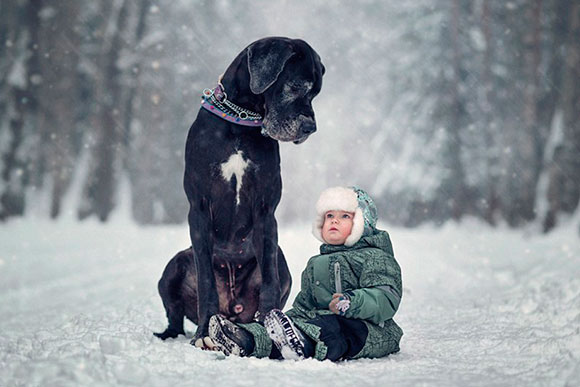 (Foto: Andy Seliverstov)
