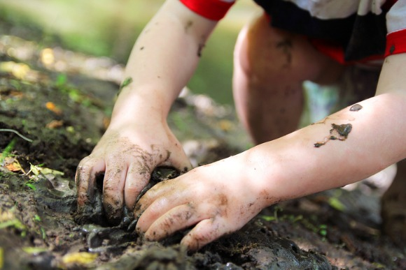 little-childs-hands-digging-in-the-mud-picture-id619539728