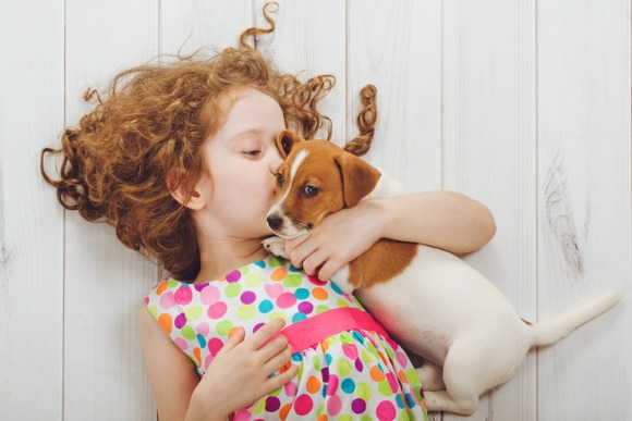 little-girl-whispers-with-her-puppy-jack-russell-picture-id865399876