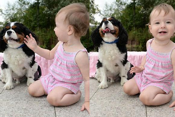 Cachorro salvou a vida de menina e eles se tornam melhores amigos (Foto: Steve Finn)