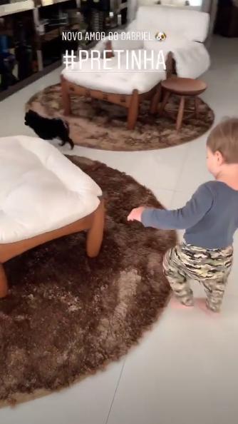 Gabriel brincando com a Pretinha, novo membro da família. (Foto: Reprodução / Instagram @andressuita)