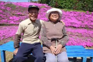 Juntos a mais de 30 anos o marido fez um jardim gigante para a esposa após ela ficar cega