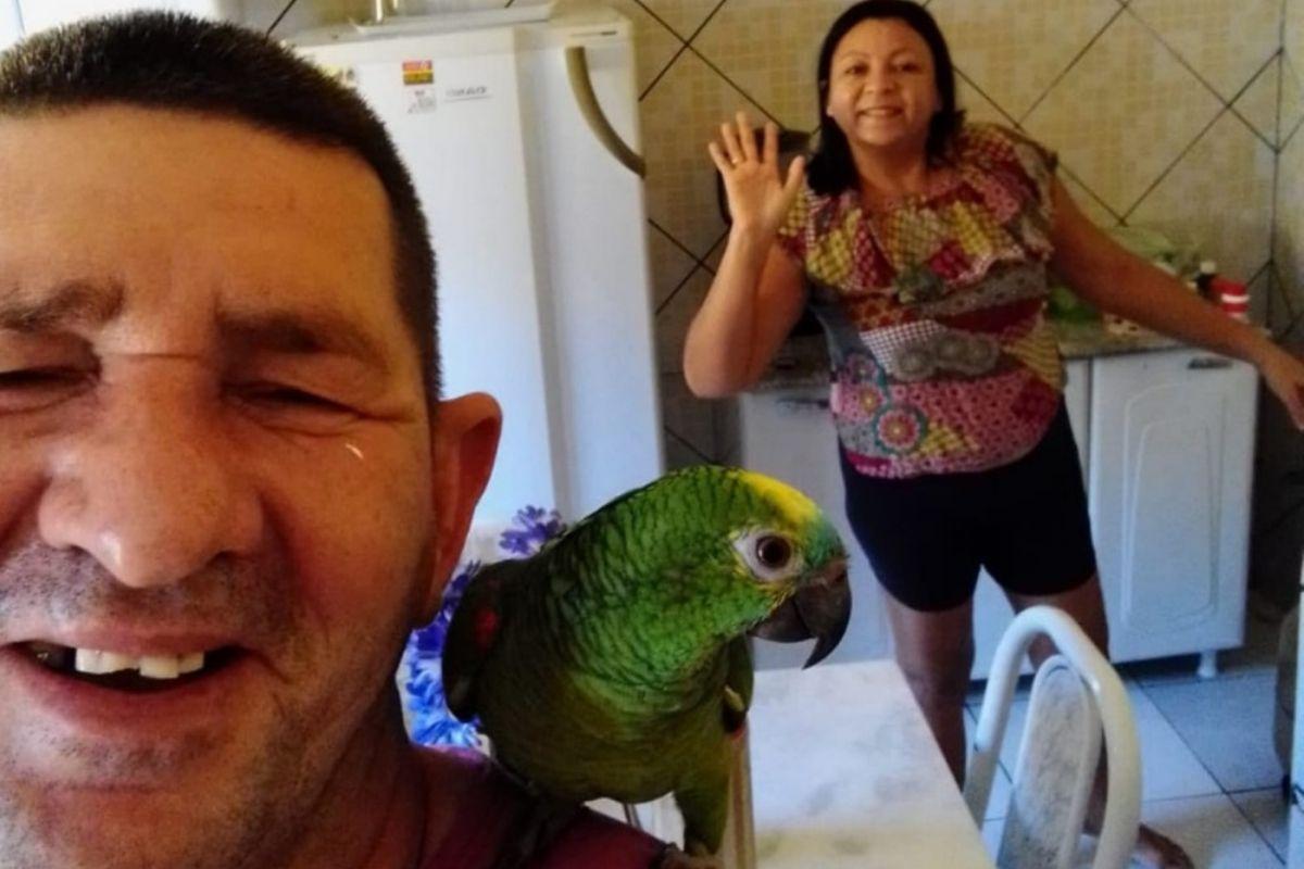Após 11 anos com o papagaio a família finalmente ganha guarda do animal