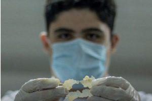 Aluno cria plástico biodegradável feito com batatas