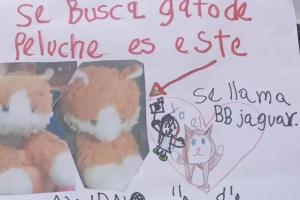 A menina fez um carta oferecendo recompensa pelo urso de pelúcia