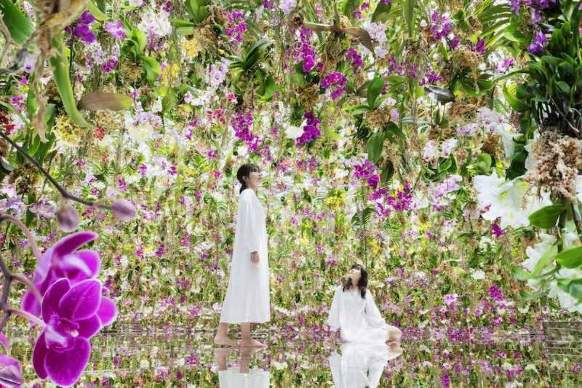 Jardim de Tóquio promete verdadeira imersão nas flores