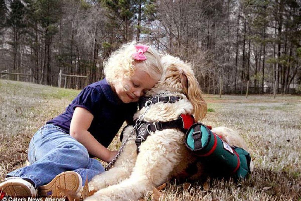O cachorro carrega o cilindro de oxigênio para