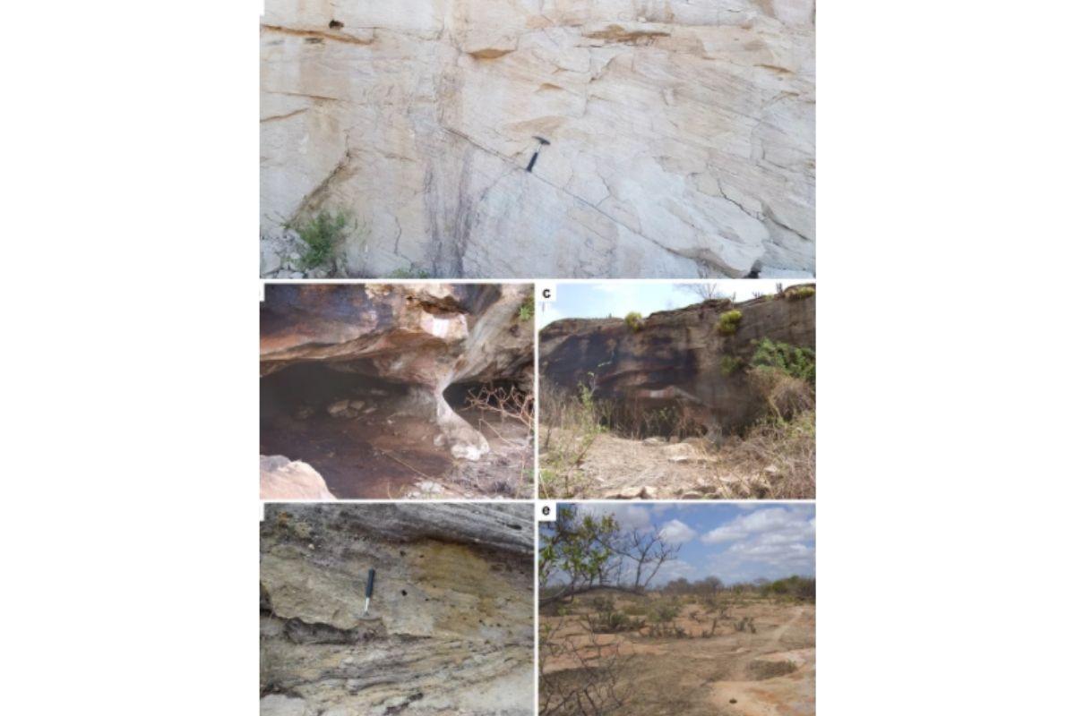 Registros dinossauros encontrados pela primeira vez no Rio Grande do Norte
