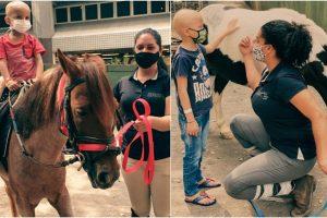 Pôneis entraram como tratamento para crianças com câncer