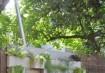 Plantas em blocos de pedra (via Apartment Therapy)